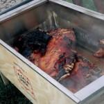 Flipped Pig B