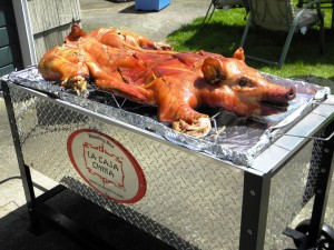 Best Roasting Box in The Market and Must Have Tool for Pig Roast Instructions