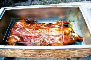 Best Roasting Box in the Market for Spit Roast Cooking