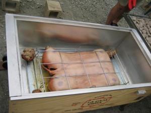 Roasting a pig