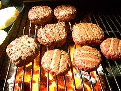 bbq grill reviews